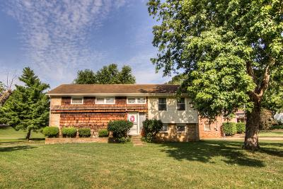 Nashville Single Family Home For Sale: 469 Rural Hill Road