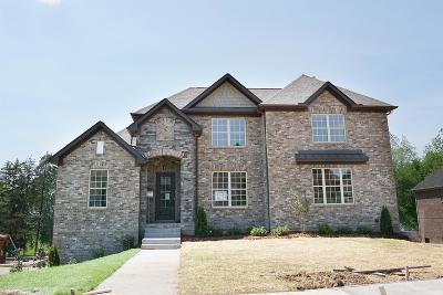 Hendersonville Single Family Home For Sale: 1019 Del Ray Trl Lot 14