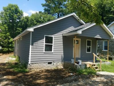 Davidson County Single Family Home For Sale: 161 B Park Cir
