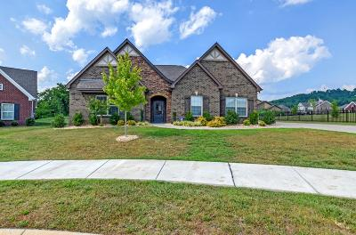 Sumner County Single Family Home For Sale: 206 Brixham Ct