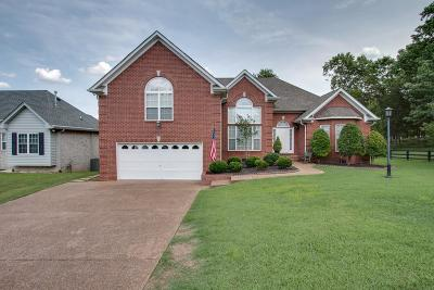 Davidson County Single Family Home For Sale: 5747 S New Hope Rd