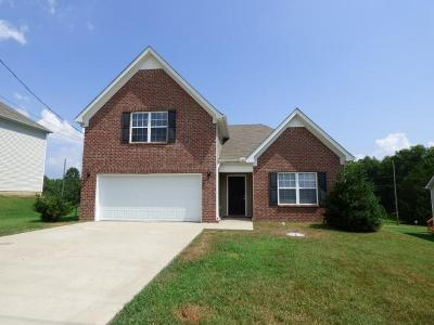 Rutherford County Single Family Home For Sale: 191 Lyndhurst Dr