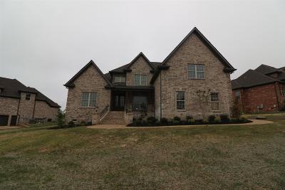 Mount Juliet Single Family Home For Sale: 917 Harrisburg Lane