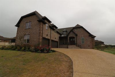 Mount Juliet Single Family Home For Sale: 2001 Beechhaven Circle