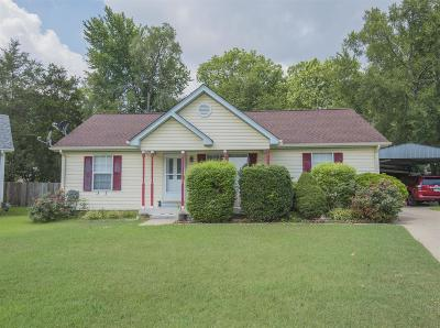 Davidson County Single Family Home For Sale: 1212 Deerhaven Ct