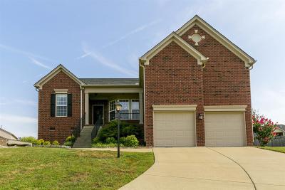 Nashville Single Family Home For Sale: 3616 Fair Meadows Ct