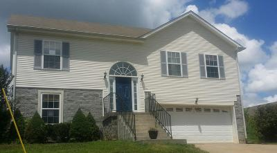 Clarksville Single Family Home For Sale: 1114 Gunpoint Dr
