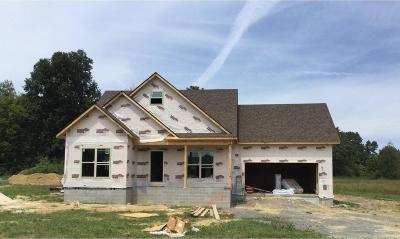 Smithville TN Single Family Home For Sale: $229,900