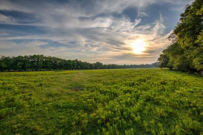 Franklin Residential Lots & Land For Sale: Trinity Rd.