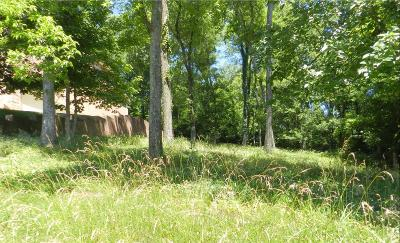 Hendersonville Residential Lots & Land For Sale: 130 Spy Glass Way