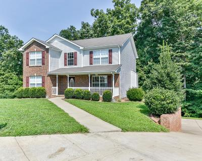 Clarksville Single Family Home For Sale: 257 Fair Haven Dr