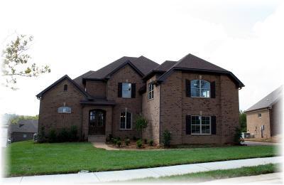 Hendersonville Single Family Home For Sale: 1075 Tower Hill Lane - Lot 70