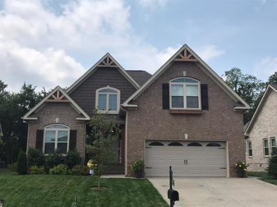 Spring Hill Single Family Home For Sale: 3013 Foust Dr