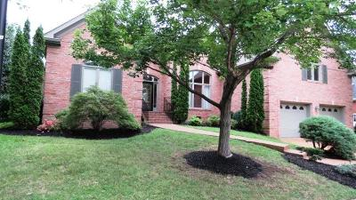 Hendersonville Single Family Home Under Contract - Showing: 168 Ashland Pt