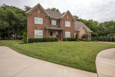 Hendersonville Single Family Home For Sale: 102 Chiswick Ct