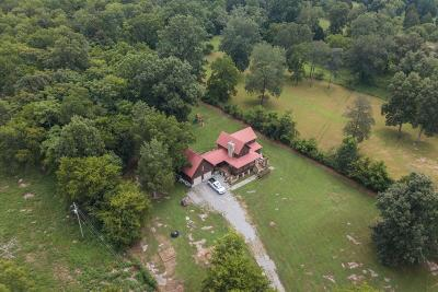 Mount Juliet Single Family Home For Sale: 1904 Benders Ferry Rd