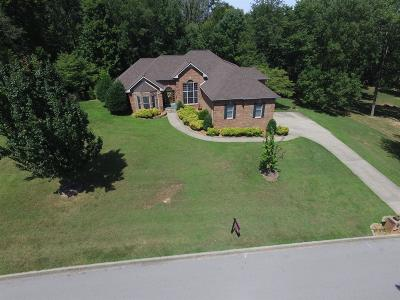 Clarksville Single Family Home For Sale: 2117 Queens Bluff Way