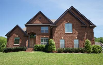 Hendersonville Single Family Home For Sale: 101 Clarendon Place