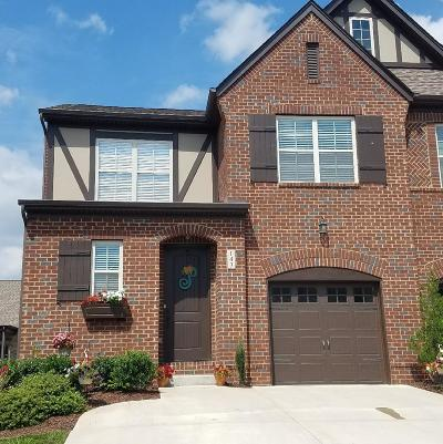 Hendersonville Single Family Home Under Contract - Showing: 143 Ambassador Private Circle