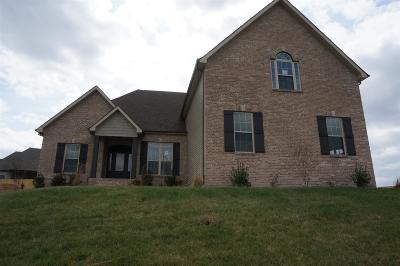 Chapmansboro Single Family Home For Sale: 1 Jim Read Rd