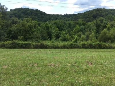 Franklin Residential Lots & Land For Sale: New Highway 96 W