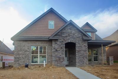 Clarksville Single Family Home For Sale: 33 Village Terrace