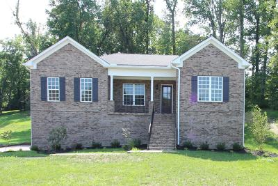 Mount Juliet Single Family Home For Sale: 328 Windhaven Bay