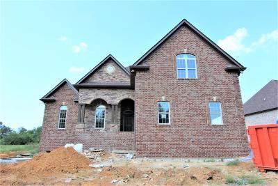 Wilson County Single Family Home For Sale: 51 Brixton Ridge #51-C