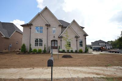 Spring Hill Single Family Home For Sale: 4128 Miles Johnson Pkwy (246)