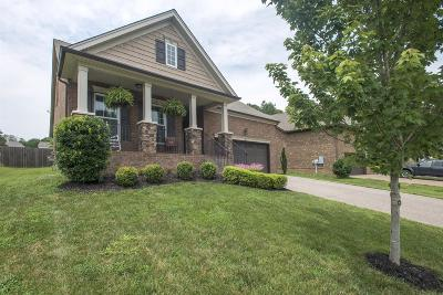 Mount Juliet Single Family Home Under Contract - Showing: 393 Anthony Branch Dr