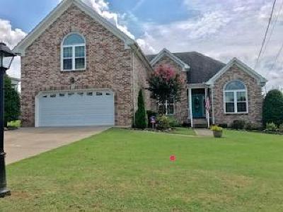 Mount Juliet Single Family Home For Sale: 415 Burgunda Ln