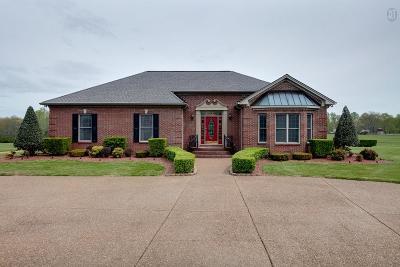 Joelton Single Family Home For Sale: 5940 Clarksville Pike