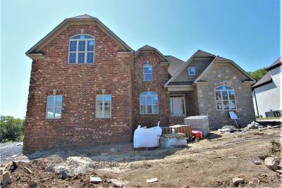 Mount Juliet Single Family Home For Sale: 106 Nichols Vale Lane #106-C