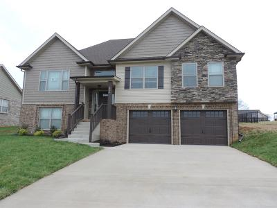 Clarksville Single Family Home For Sale: 61 Ivy Bend