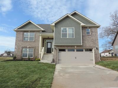 Clarksville Single Family Home For Sale: 62 Ivy Bend
