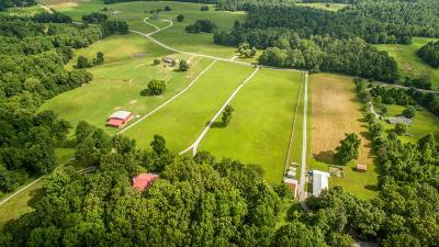 Bon Aqua, Burns, Charlotte, Cumberland Furnace, Dickson, Lyles, Vanleer, White Bluff Residential Lots & Land For Sale: 901 Town Branch Rd