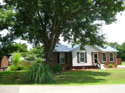 Smyrna Single Family Home Under Contract - Showing: 206 Luckett Pl