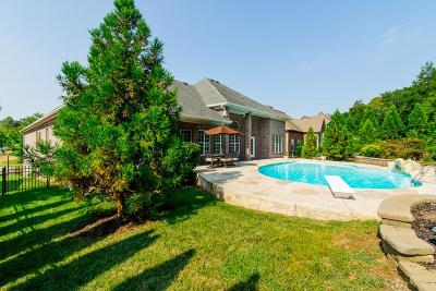 Hendersonville Single Family Home For Sale: 1049 Island Brook Dr