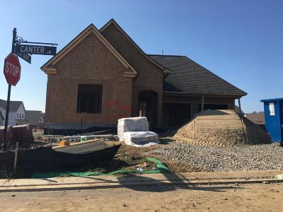 Hendersonville Single Family Home For Sale: 754 Canter Lane Lot #444