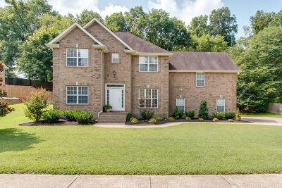 Mount Juliet Single Family Home For Sale: 271 Page Dr