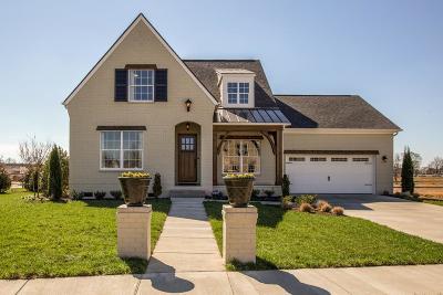 Single Family Home For Sale: 4846 Kingdom Drive Lot 83