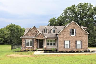 Spring Hill Single Family Home For Sale: 1728 Zevon Ct