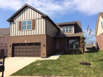 Nolensville Single Family Home For Sale: 4152 Alva Lane