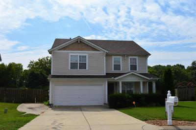 Rutherford County Single Family Home For Sale: 377 Stewart Spring
