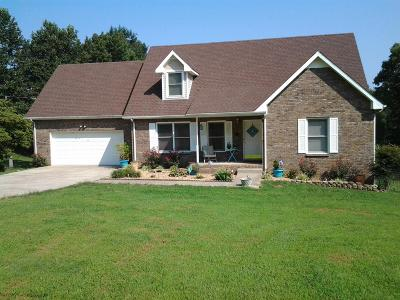Clarksville Single Family Home For Sale: 621 Salem Ridge Rd