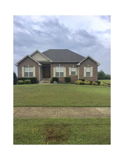 Ashland City Single Family Home For Sale: 1721 Leaf Ln,