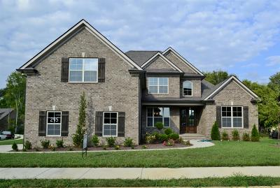 Spring Hill Single Family Home For Sale: 4034 Haversack Drive (295)