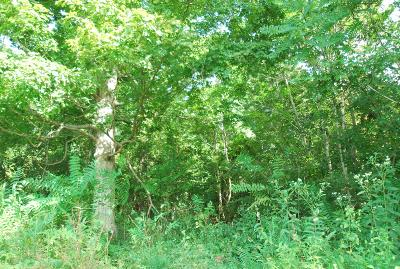 Hendersonville Residential Lots & Land For Sale: New Hope Rd