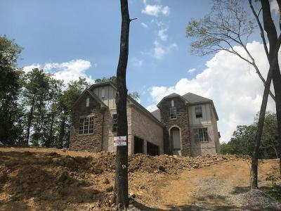 Nolensville Single Family Home For Sale: 208 Belvedere Circle