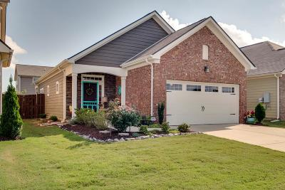 Spring Hill Single Family Home For Sale: 4966 Paddy Trce